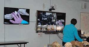 Discovery Hall Programs offers virtual field trip through ACCESS