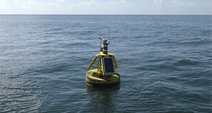 Offshore buoy delivers real-time data to you