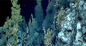 NOAA OER Online PD Mini-Series: Hydrothermal Vents